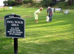 Great Dog Parks in Las Vegas
