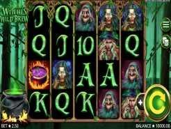 Witches Wild Brew Slots